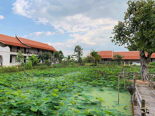 スリウィライ スコータイ(Sriwilai Sukhothai)敷地内の蓮池2