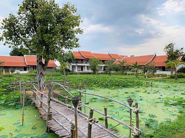 スリウィライ スコータイ(Sriwilai Sukhothai)の敷地内中心部に広がる蓮池3