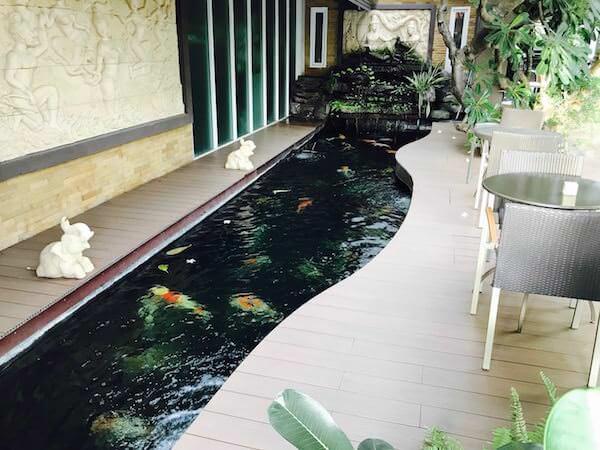 スワンナプーム スイート(Suvarnabhumi Suite)の鯉池