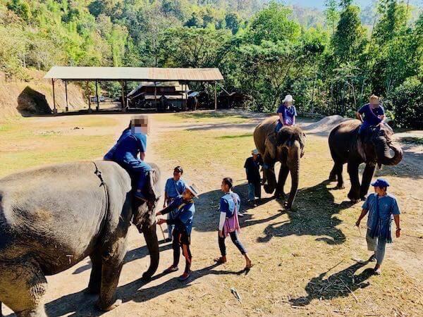タイエレファントホームで象に乗る参加者達
