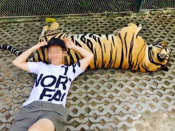 タイガーパークパタヤでの撮影1