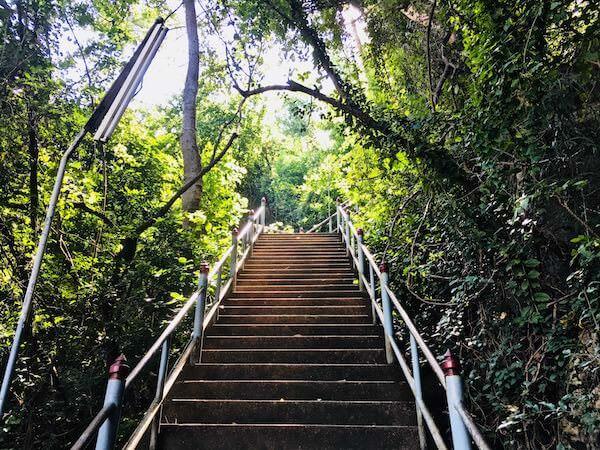ワット テープ ピタック プンナーラーム(Wat Thep Phithak Punnaram)の階段